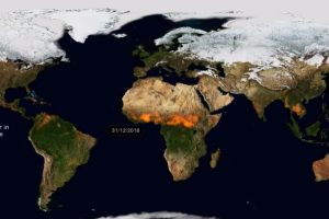 This is how much of Earth was on fire in 2019